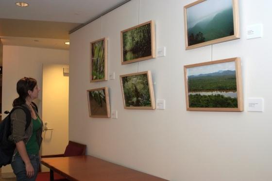 Display on a Wall