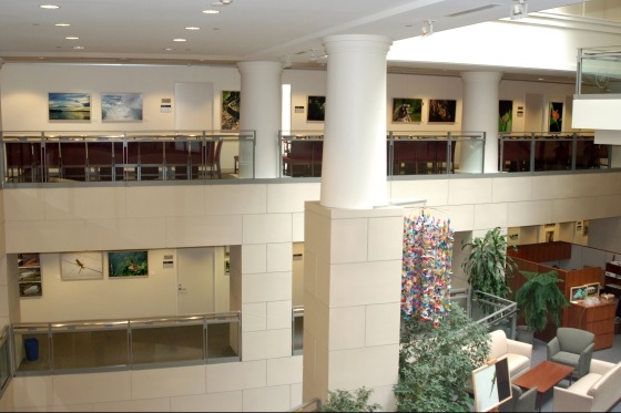 Overview of Prince Hussain Aga Khan's Exhibition at Woodrow Wilson Center