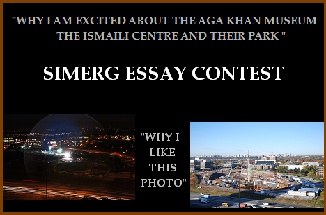 essay contests with cash prizes 2011