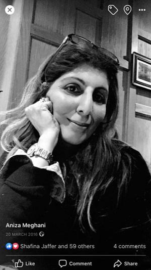 Aniza Meghani, Simerg