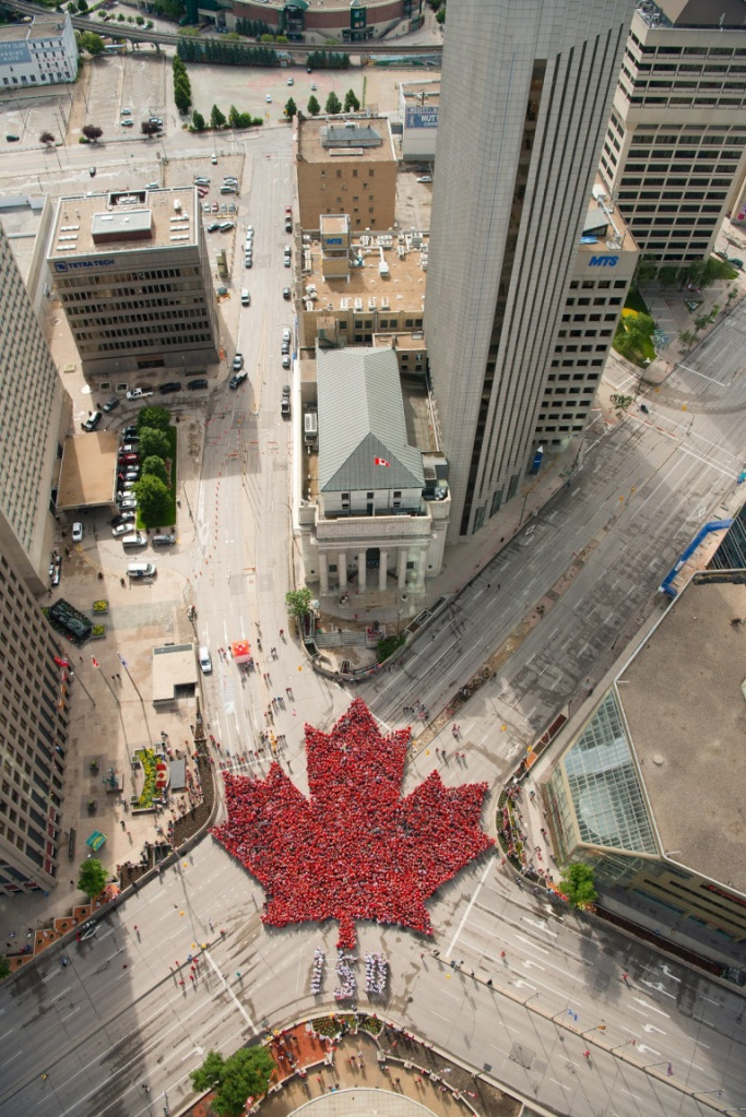 Canada Day Living Maple Leaf in Winnipeg Simerg