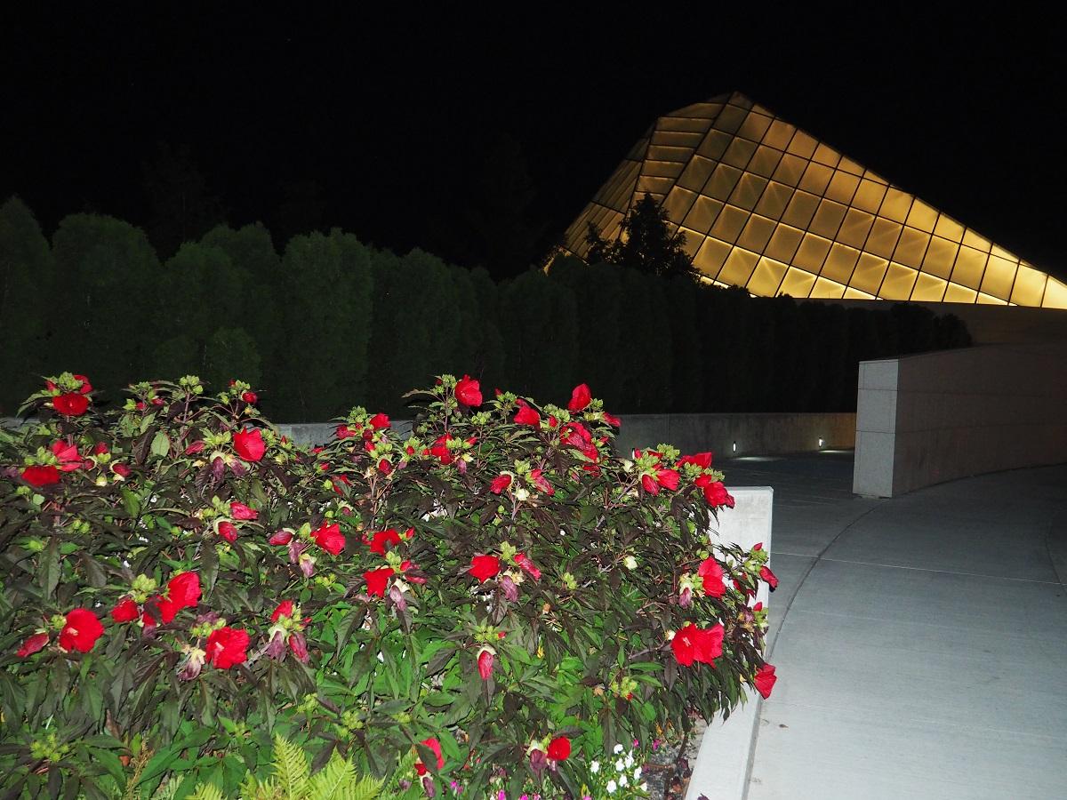 Hibiscus Aga Khan Park Ismaili Jamatkhana Aga Khan Museum Malik Merchant Simerg